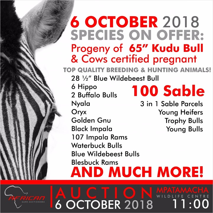 African Game Auctioneers SABLE AUCTION